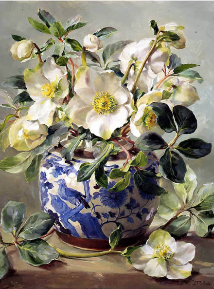 White Hellebores in a Chinese Vase - Birthday Card by Anne Cotterill