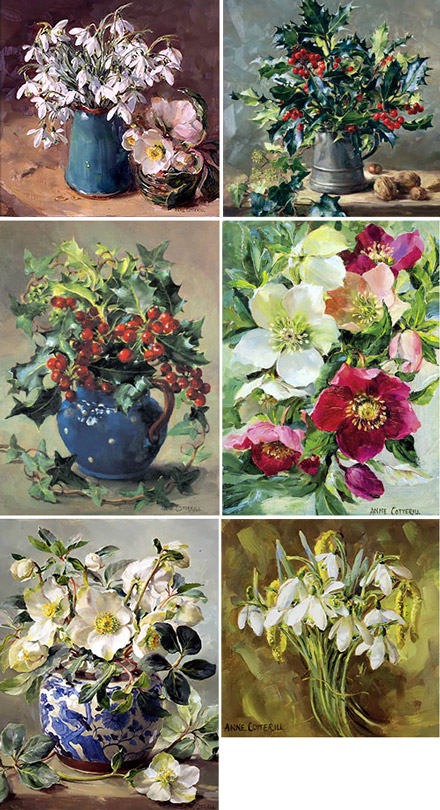 Anne Cotterill Winter Flowers Christmas Card Set