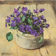 Wild Violets greeting card by Anne Cotterill Flower Art
