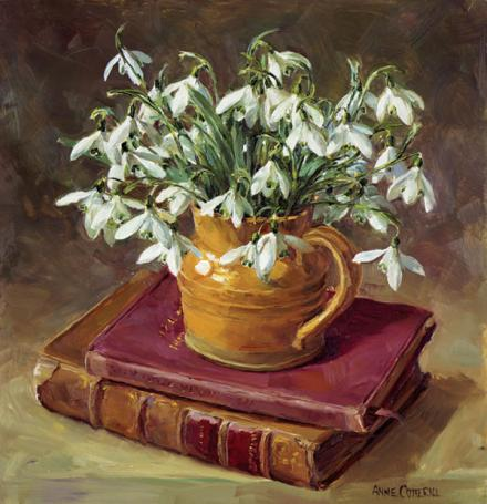 Snowdrops with Books - Christmas Card