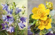 Harebells/Kingcups note cards by Anne Cotterill Flower Art